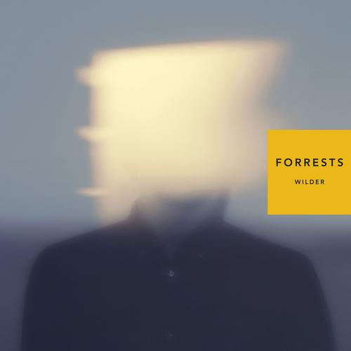 Forrests - Wilder