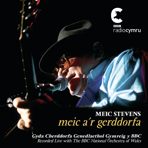 Meic Stevens - Meic A'R Gerddorfa / Meic And The Orchestra