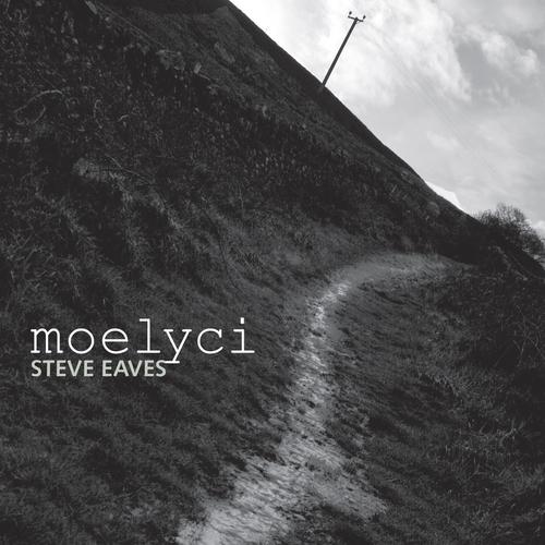 Steve Eaves - Moelyci