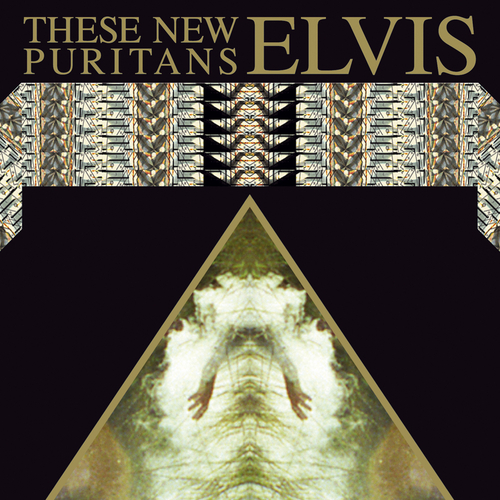 These New Puritans - Elvis