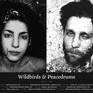 Wildbirds & Peacedrums 2010 tour poster