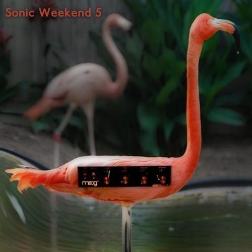 Sonic Weekend Collective - Sonic Weekend #5