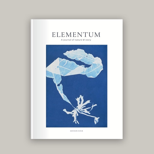 Elementum Journal Edition Four – Shape