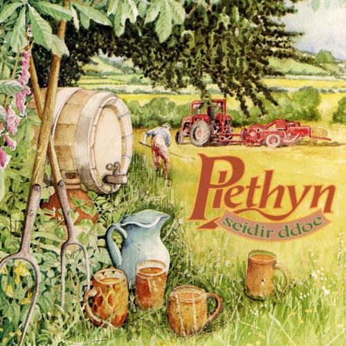 Plethyn - Seidir Ddoe