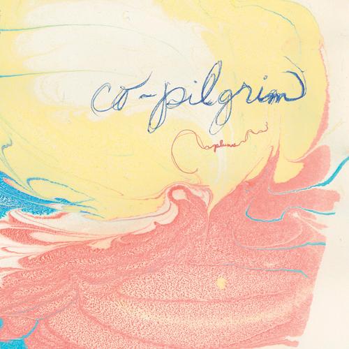 Co-pilgrim - Plumes