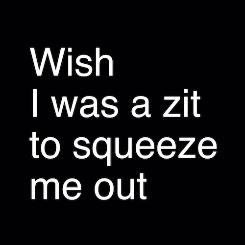 Wish I Was a Zit /Tee - I Don't Do Interviews