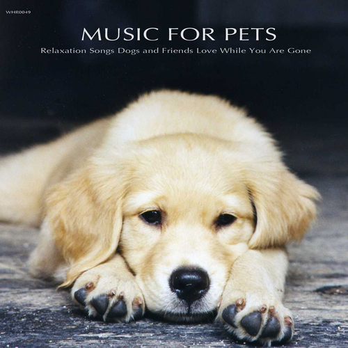 Music for Pets Specialists - Music for Pets - Relaxation Songs Dogs and Friends Love While You Are Gone