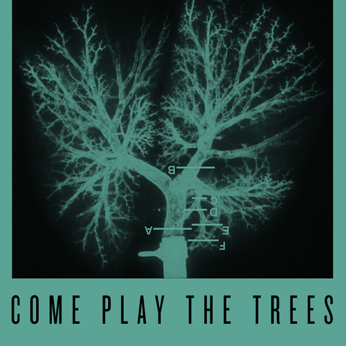 Snapped Ankles - Come Play The Trees