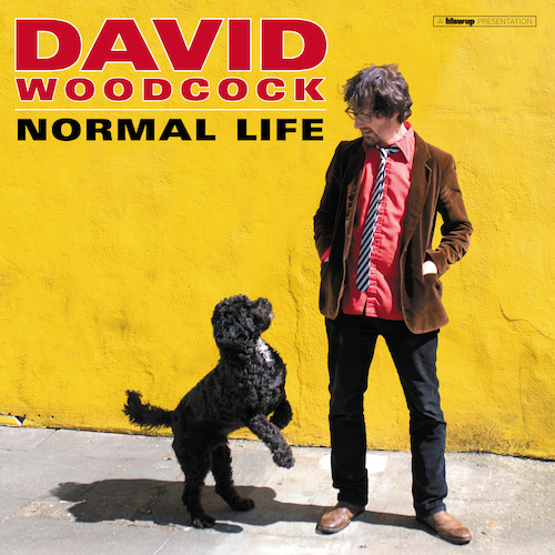 David Woodcock - Normal Life