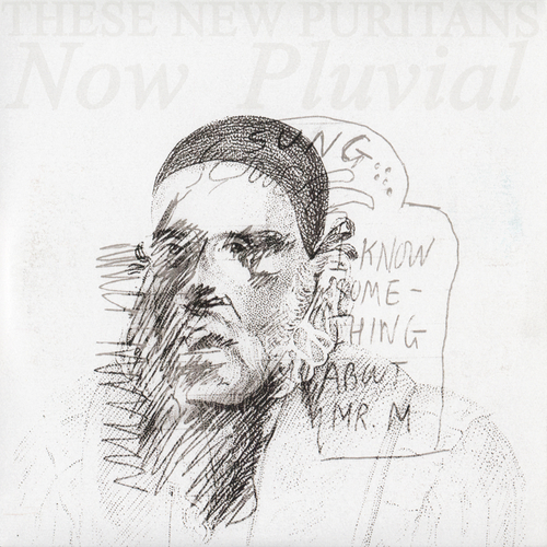 These New Puritans - Now Pluvial