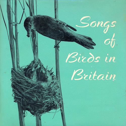 John Kirby - Songs of Birds in Britain