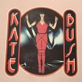 Super Rare Kate Bush Sweat!!!