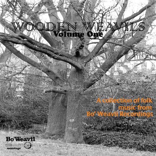 Various Artists - Wooden Weavil Volume 1 (collection of folk music from Bo' Weavil Recordings)