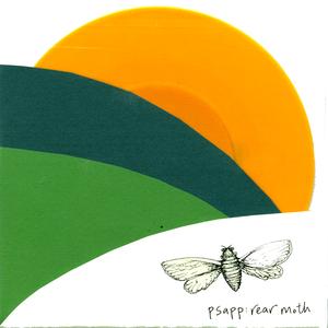 Psapp - Rear Moth